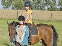 Pony-25539